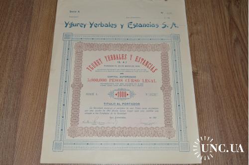 Акция. Ygurey Yerbales y Estancias S. A. 1926 год №842 (29)38*30