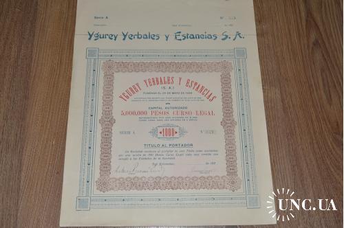 Акция. Ygurey Yerbales y Estancias S. A. 1926 год №849 (28) 38*30