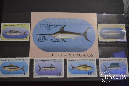 Сахара. Фауна. Рыбы 1997 год
