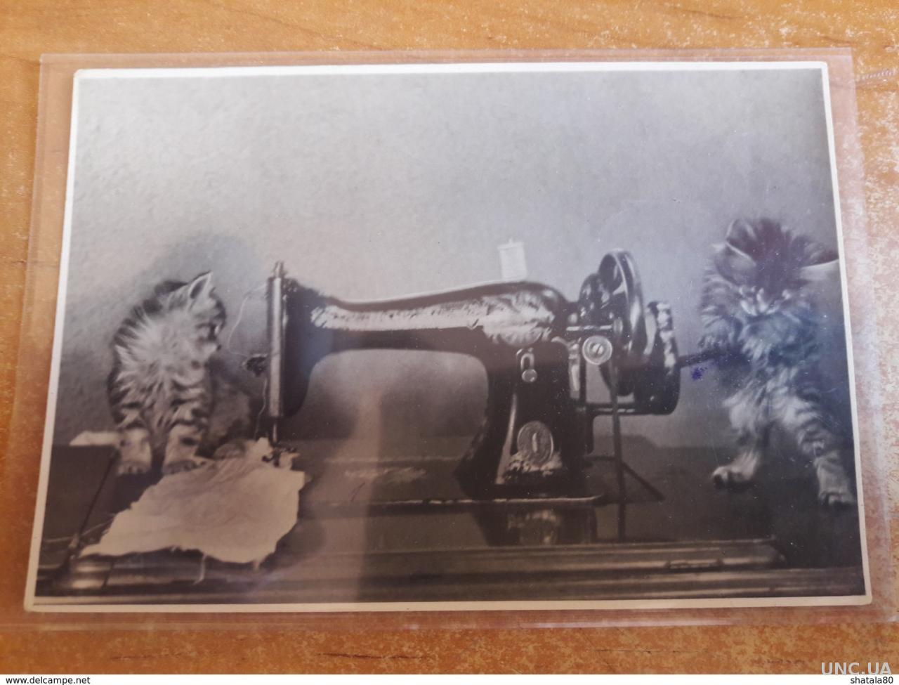 лесбиянки открытка в виде швейной машинки крест фасаде как
