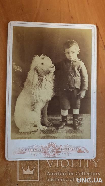 Открытка-фотография старинная Ахтырка Кабинет фото. Мальчик с огромным псом