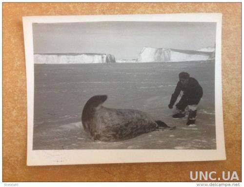 Фото. Россия. Антарктида в 1959 году.