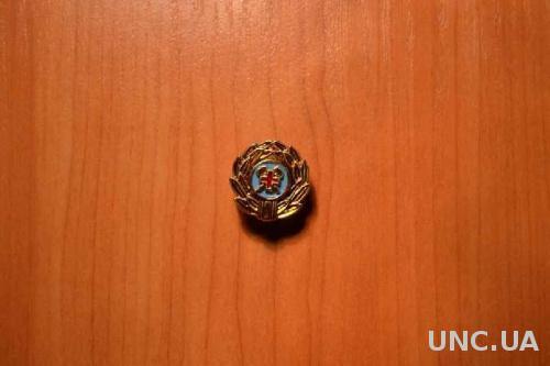 Эмблема горноспасатели Украина (пластик)