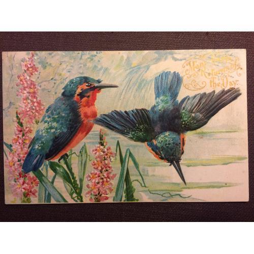 Открытки папирус колибри ручной