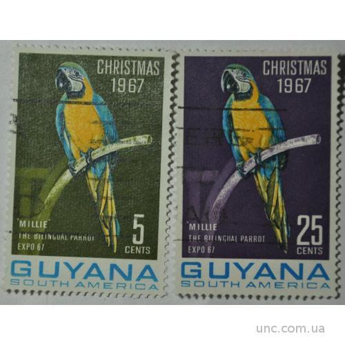 Гайяна Попугай Рождество 1967