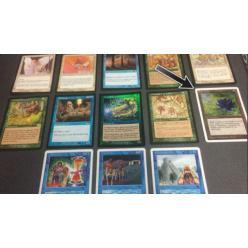 """В Японии мать выставила на торги редкую карту сына из """"Magic the Gathering"""" за 9 долларов"""