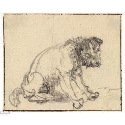 Неожиданно обнаружен ранее неизвестный рисунок Рембрандта