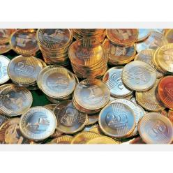 Банк Венгрии обсуждает памятные форинты с венграми