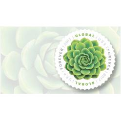 В США выпустят новую международную безноминальную марку, украшенную вечнозеленым растением