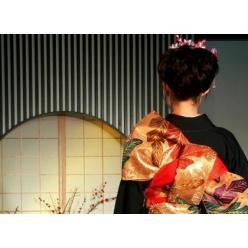 В Харькове состоится открытие выставки кимоно