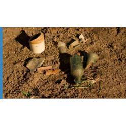"""В Новой Зеландии археологи обнаружили """"следы войны"""" англичан с племенами маори"""