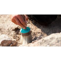 В Азербайджане археологи наткнулись на древнее поселение