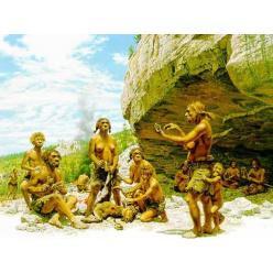 Неандертальцы занимались коллекционированием