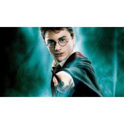 В Великобритании украдена уникальная рукопись приквела «Гарри Поттера»