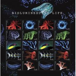 В США выпустили необычные «биолюминесцентные» марки