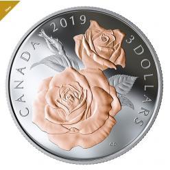 Канада выпустила монету, посвященную известному виду роз «Королева Елизавета»
