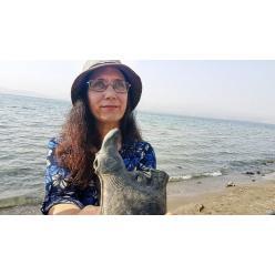 На пляже Кинерет найден уникальный сосуд возрастом 1500 лет