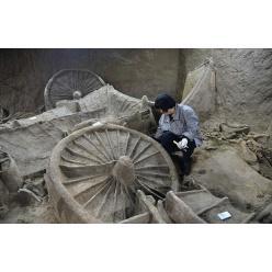 В Китае найдена гробница с останками 100 лошадей