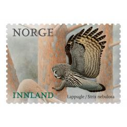 На норвежских марках появилась снежная сова из Гарри Поттера