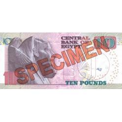 В Египте планируют выпустить пластиковые банкноты