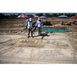 На острове Кипр вновь привлекла внимание археологов мозаика с изображением гонок на колесницах