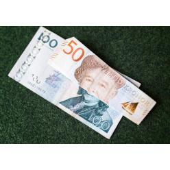 В Швеции монеты и купюры некоторых номиналов перестали быть средствами платежа