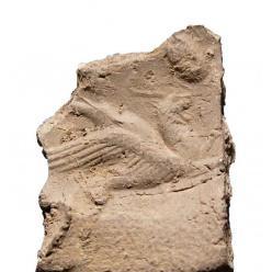 Старинный ткацкий станок выявили археологи в Ираке