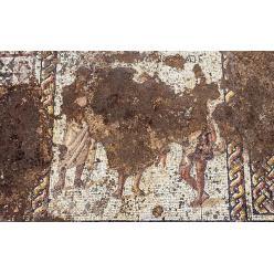 В Кесарии археологи выявили 1 800-летняю мозаику и греческую надпись