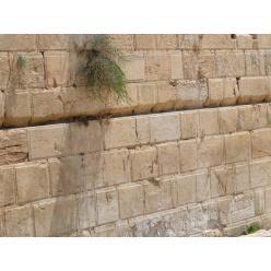 Открытия на раскопках у Стены плача в Иерусалиме