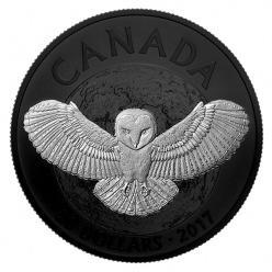 В Канаде отчеканили коллекционную монету с совой-сипухой