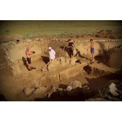 В Иерусалиме обнаружена 4000-летняя амфора с останками девяти лягушек