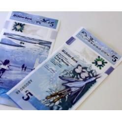 Стал известен дизайн первых пластиковых банкнот Северной Ирландии