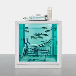 Аукционный дом Christie's выставил на аукцион живую рыбу