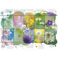 Нидерланды представили коллекцию марок с изображением диких цветов