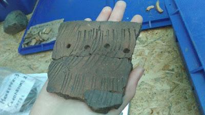 Косторезную мастерскую возрастом в две тысячи лет нашли на Алтае