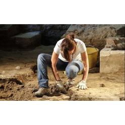 К дню археолога: самые известные артефакты, найденные на территории Украины