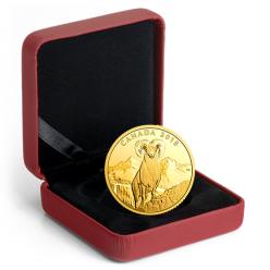 В Канаде отчеканена монета с изображением багровой овцы
