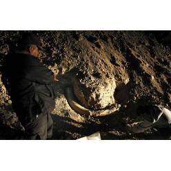 В Словакии выявлена стоянка охотников на мамонтов, которой более 25 000 лет