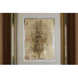 Специалисты выявили отпечаток пальца Леонардо да Винчи на рисунке из Королевского собрания