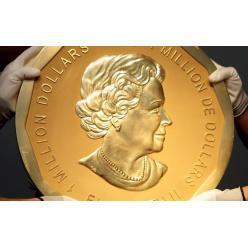В Германии задержаны подозреваемые, похитившие самую крупную золотую монету