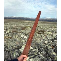 На юге Норвегии найден меч викингов возрастом 1100 лет