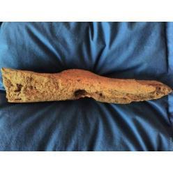 Одесские археологи обнаружили древнюю находку