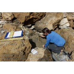 Артефакты возрастом 4 тыс лет найдены на перевале в Швейцарии