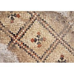 В Израиле выявлен Мозаичный пол грузинской церкви 1500-летней давности