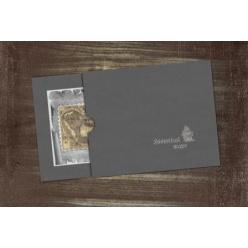Выпущена коллекционная банкнота в виде карты