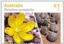 В Австралии выпустили почтовые марки с диковинными растениями