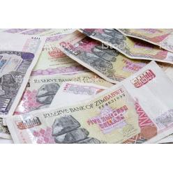 Правительство Зимбабве намерено вернуть в наличное обращение зимбабвийский доллар