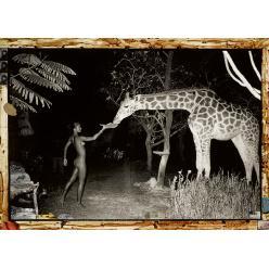 Фото из собрания Леланда Хирша выставлены на торги Sotheby's