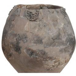 В Грузии в 8 000-летних сосудах обнаружены остатки самого древнего напитка