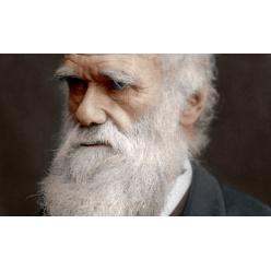 Стоимость книги Чарльза Дарвина может достичь $667 000
